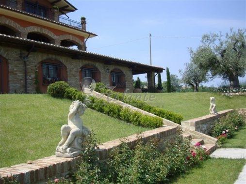 444 VI SALUDECIO Sant'Ansovino (Medium) (11)